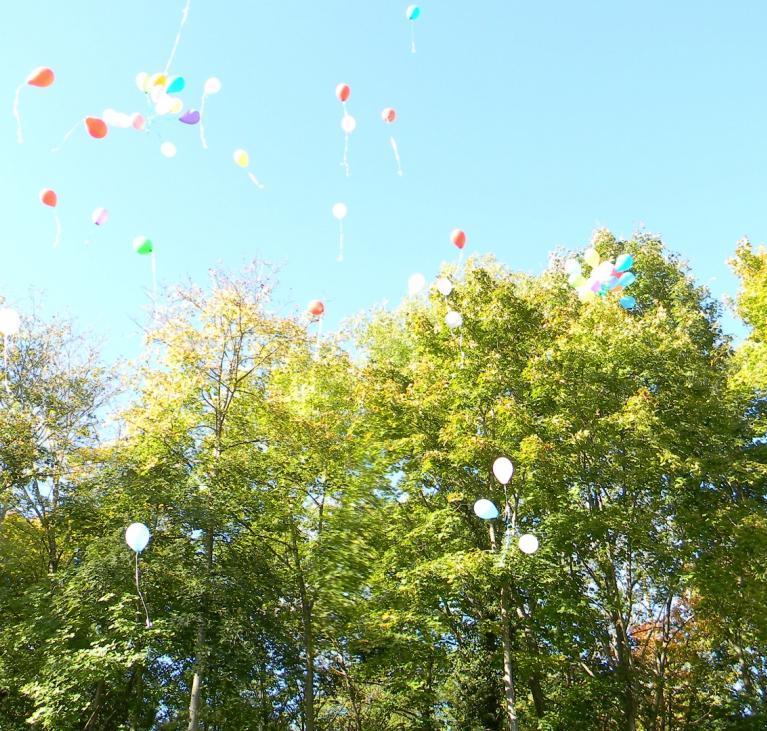 Ballon et arbres
